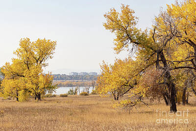 Photograph - Autumn In Cherry Creek State Park by Nicki Hoffman
