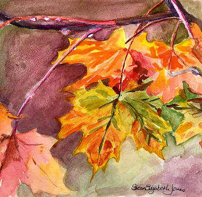 Susan Elizabeth Jones Royalty-Free and Rights-Managed Images - Autumn Leaves by Susan Elizabeth Jones