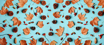 Royalty-Free and Rights-Managed Images - Autumn leaves with acorn and cones composition pattern on pastel by Jelena Jovanovic