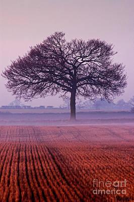 Photograph - Autumn Mists by Simon Pocklington