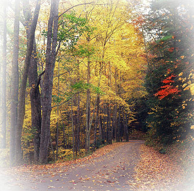 Rights Managed Images - Autumn Road to Cataloochee Royalty-Free Image by James C Richardson