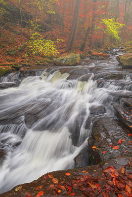 Royalty-Free and Rights-Managed Images - Autumn Slide by Darren White
