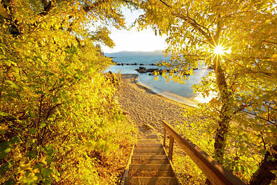 Royalty-Free and Rights-Managed Images - Autumn Steps - Lake Tahoe by Brad Scott