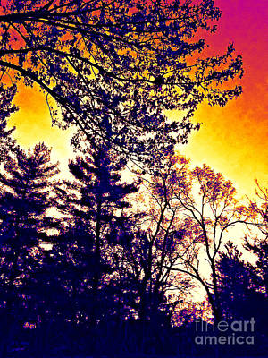 Frank J Casella Royalty-Free and Rights-Managed Images - Autumn Sunrise Abstract - Thermal Effect by Frank J Casella