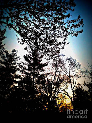 Frank J Casella Royalty-Free and Rights-Managed Images - Autumn Sunrise Silhouette by Frank J Casella