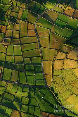 Photograph - Azorean Patchwork by Bruno Azera