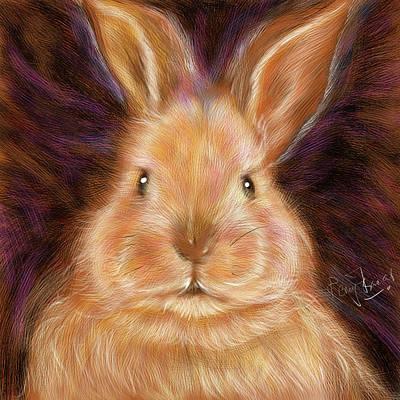 Digital Art - Baby Bunny by Remy Francis