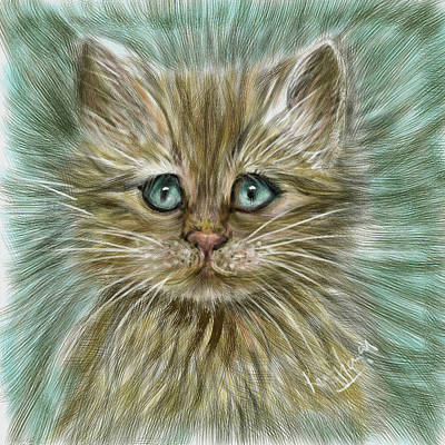 Digital Art - Baby Cat Kitten - from Dubai by Remy Francis