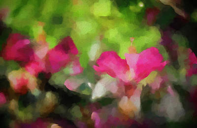 Colorful People Abstract Royalty Free Images - Backyard Hibiscus Abstract Royalty-Free Image by Francis Sullivan