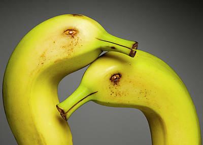 Photograph - Banana Ducks by Cacio Murilo De Vasconcelos