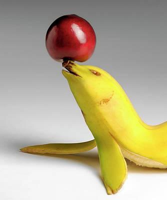 Photograph - Banana Seal by Cacio Murilo De Vasconcelos