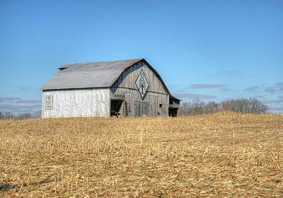Animal Portraits - Barn Across the Cornfield by Douglas Barnett