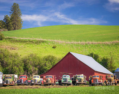 Royalty-Free and Rights-Managed Images - Barn and trucks by Inge Johnsson