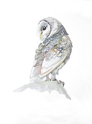 Royalty-Free and Rights-Managed Images - Barn Owl by Luisa Millicent