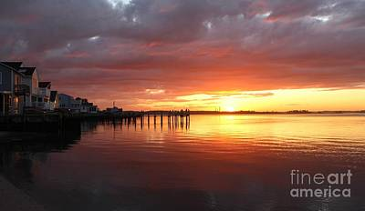 Bringing The Outdoors In - Bayside Sunset by Toni Malon
