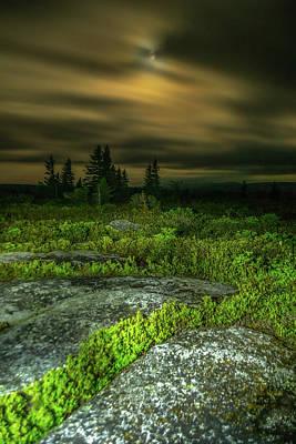 Music Figurative Potraits - Bear Rocks Full Moon 2 by Jason Funk