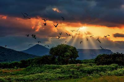 Photograph -  Beautiful land by Manolis Tsantakis