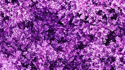 Royalty-Free and Rights-Managed Images - Beautiful purple background with leaves, season of the year. vintage illustration, 3d rendering.  by Julien