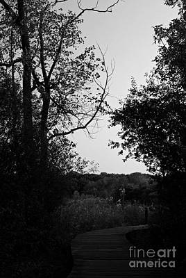Frank J Casella Royalty-Free and Rights-Managed Images - Beauty Around The Bend - Black and White by Frank J Casella