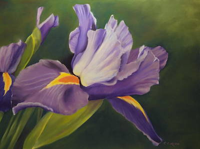 Pastel - Beauty Is In the Iris by Carol Corliss