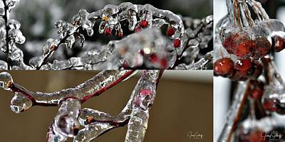 Jerry Sodorff Royalty-Free and Rights-Managed Images - Beauty Of Ice Collage by Jerry Sodorff