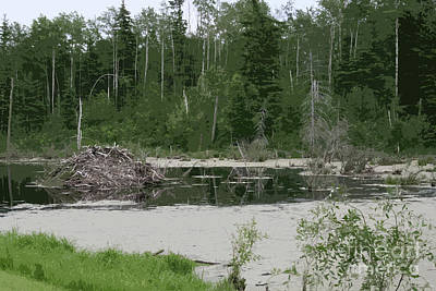 Impressionist Landscapes - Beaver Dam by Mary Mikawoz