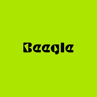 Royalty-Free and Rights-Managed Images - Beegle #Beegle by TintoDesigns