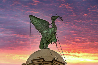 Photograph - Bella the Liverpool Liver Bird at Twilight by David Wood