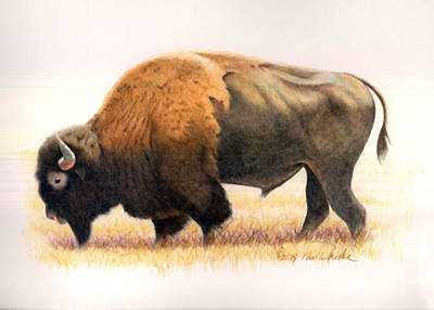 Namaste With Pixels - Big Bull by Charles Walker