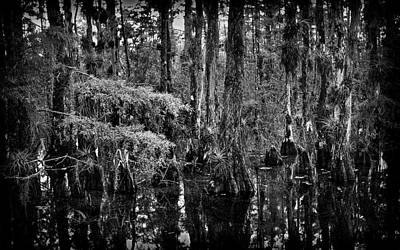 Wild Weather - Big Cypress Swamp -3 by Rudy Umans