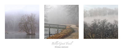 Wilderness Camping - Billy Goat Trail Fog Triptych by Francis Sullivan