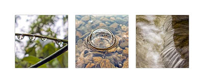 Keith Richards - Billy Goat Trail Water Triptych by Francis Sullivan