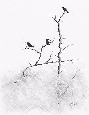 Drawing - Birds in the Fog by Judy Horan