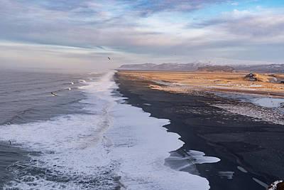 Fine Dining - Black sand beach Iceland by Ujjwal Shrestha