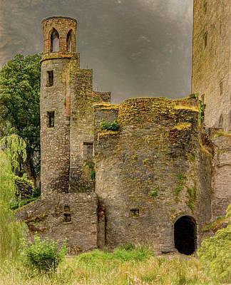 Photograph - Blarney Castle, Vertical by Marcy Wielfaert