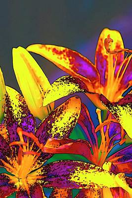 Jerry Sodorff Royalty-Free and Rights-Managed Images - Blossoms and Pods by Jerry Sodorff