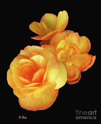World Forgotten - Blossoms in Yellow and Orange by Sharon Williams Eng