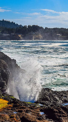 Fruits And Vegetables Still Life - Blow Hole Depoe Bay by Bonny Puckett