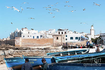 Transportation Royalty-Free and Rights-Managed Images - Blue Fishing by Ulysse Pixel boats and seagull in Essaouira - Morocco
