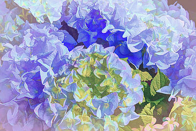 Abstract Sailboats - Blue Hydrangea Artistic 1  by Linda Brody