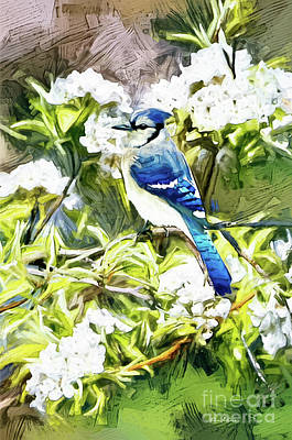Clouds Rights Managed Images - Blue Jay In The Blossoms Royalty-Free Image by Tina LeCour