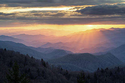 Winter Animals - Blue Ridge Parkway North Carolina Cherokee Gold by Robert Stephens