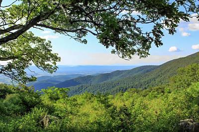 Spot Of Tea Royalty Free Images - Blue Ridge Summer Royalty-Free Image by David Beard
