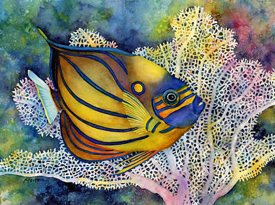 Beach House Signs - Blue Ring Angelfish by Hailey E Herrera