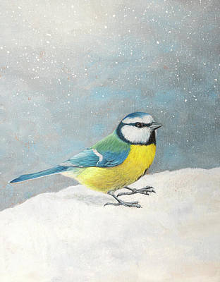 Painting - Blue Tit in the snow by Craig Austin