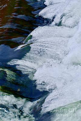 From The Kitchen - Blue Water Tippy Dam Tailwaters by Marie Debs