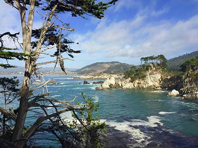 Royalty-Free and Rights-Managed Images - Bluefish Cove Point Lobos by Luisa Millicent