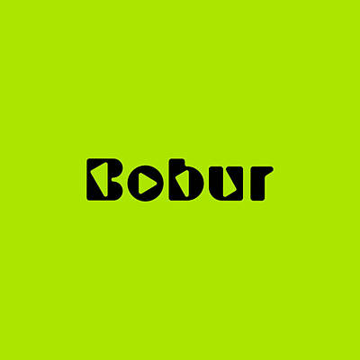 Royalty-Free and Rights-Managed Images - Bobur #Bobur by TintoDesigns