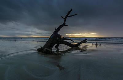 Nighttime Street Photography - Botany Bay Plantation Boneyard Beach Fourteen by Douglas Wielfaert