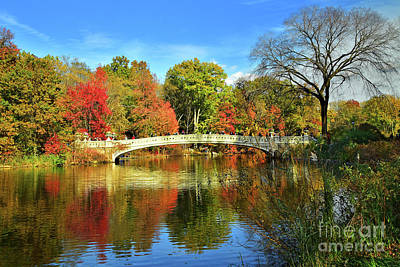 Basketball Patents - Bow Bridge and Autumn Beauty by Regina Geoghan